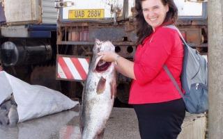 Berta fish